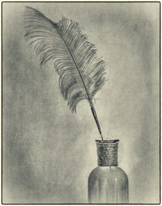 Valerie Interligi - Feather In A Bottle - 2nd Place - A BW