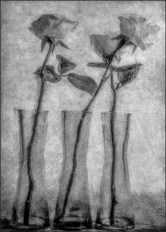 Ellen Gallagher - Textured Still Life-A IOM BW